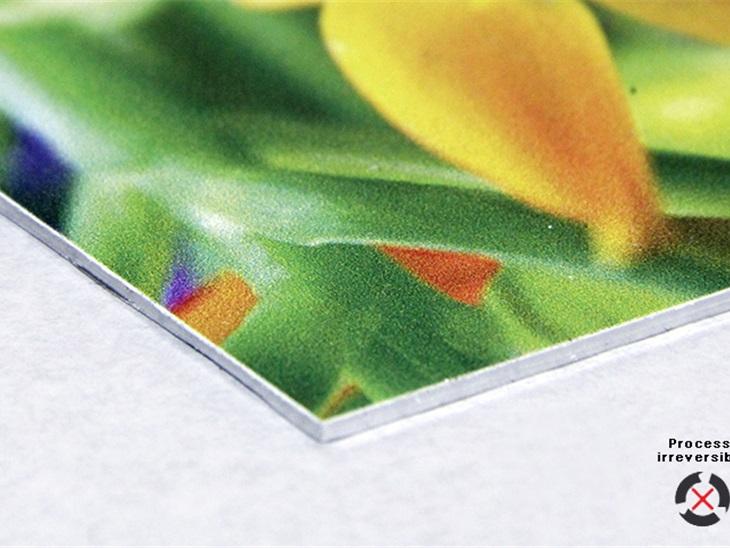 Prodotto | Stampa  diretta su lamina di alluminio bianco 1 mm