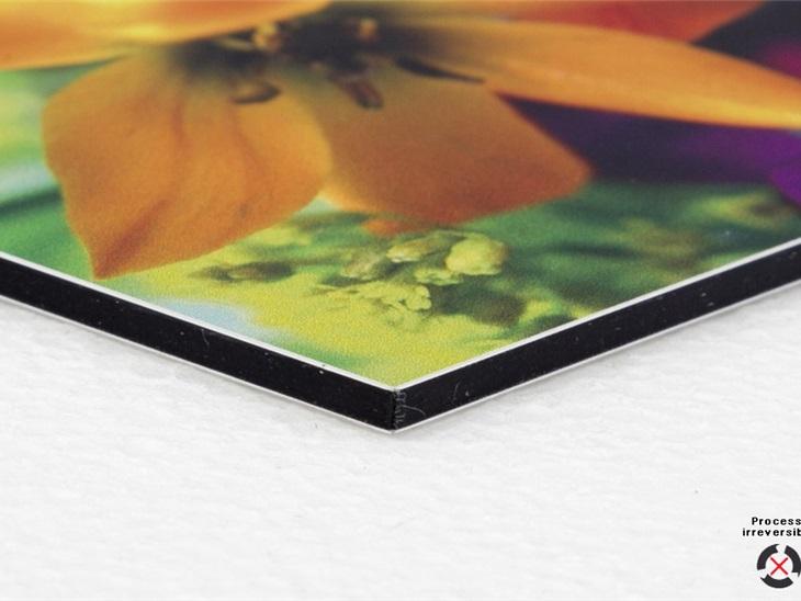 Prodotto | Stampa diretta su alluminio Dibond bianco 3 mm