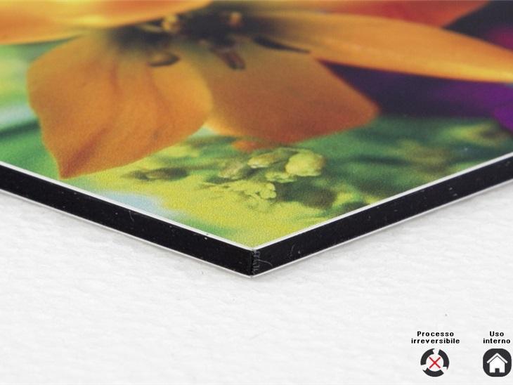 Prodotto | Accoppiamento carta fotografica/cotone su alluminio Dibond 3 mm